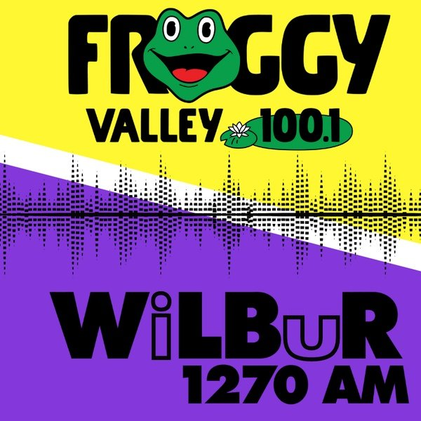 Froggy Valley 100.1 - WFVY