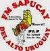 SAPUCAY FM 91.9 Logo
