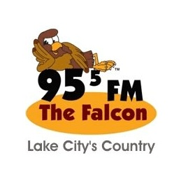 The Falcon - WDSR