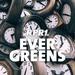 RPR1. - Evergreens Logo
